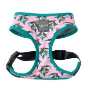 FuzzYard Dog Harness LL Cool Jaws