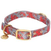 Kip & Co Dog Collar Spaghetti Meatballs