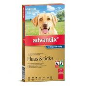 Advantix Tick and Flea Treatment for Extra Large Dogs over 25kg