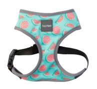 FuzzYard Dog Harness Summer Punch