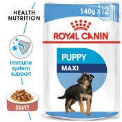Royal Canin Canine Maxi Puppy Wet Dog Food 10x140g
