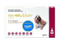 Revolution for Dogs 10-20kg