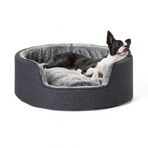 A Heated Dog Bed | Stay At Home Mum