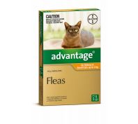 Advantage Flea Treatment for Small Cats up to 4kg