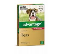 Advantage Flea Treatment for Large Dogs 10-25kg
