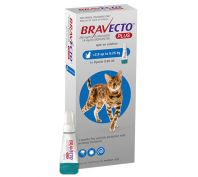 Bravecto Spot on Plus Medium Cat Blue 2.8 - 6.25kg 1 Pack