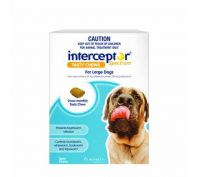 Interceptor Spectrum Tasty Chews for Large Dogs Pack of 6