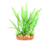 Kazoo Aquarium Bush Green With Thin Leaf Small