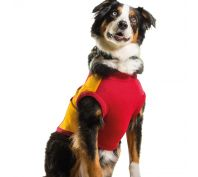 AFL Dog Jumper Gold Coast Suns