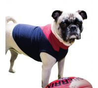 AFL Dog Jumper Melbourne Demons