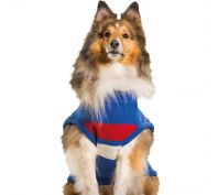 AFL Dog Jumper Western Bulldogs