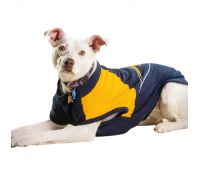 AFL Dog Jumper West Coast Eagles