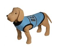 State Of Origin Dog Jumper NSW Blues