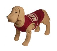 State of Origin Dog Jumper QLD Maroons