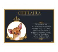 Splosh Chihuahua Fine Dining Pet Placemat