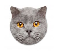 Splosh Ceramic Coaster Kitty Smokey