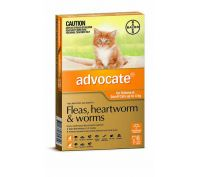 Advocate Cat Bayer 0-4kg Small Orange