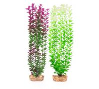 Kazoo Aquarium Plant Small Leaf Purple/White